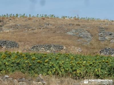 Cañones del Río Cega y  Santa Águeda  – Pedraza;rutas rascafria senderismo hoces del duraton